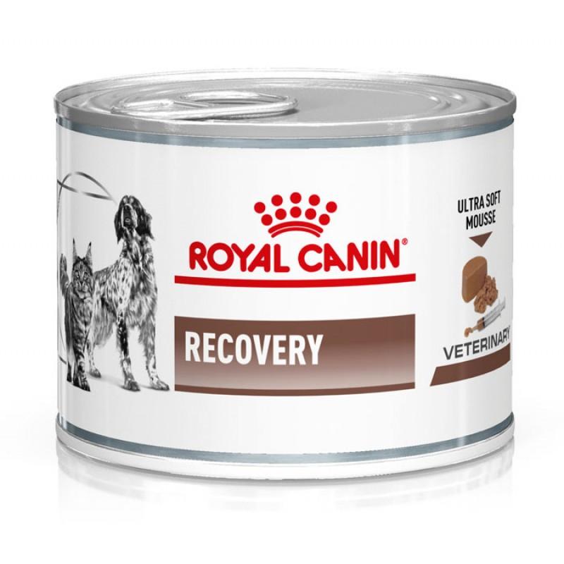 Влажный корм Royal Canin Recovery Canin/Feline диета для кошек 0,195 кг