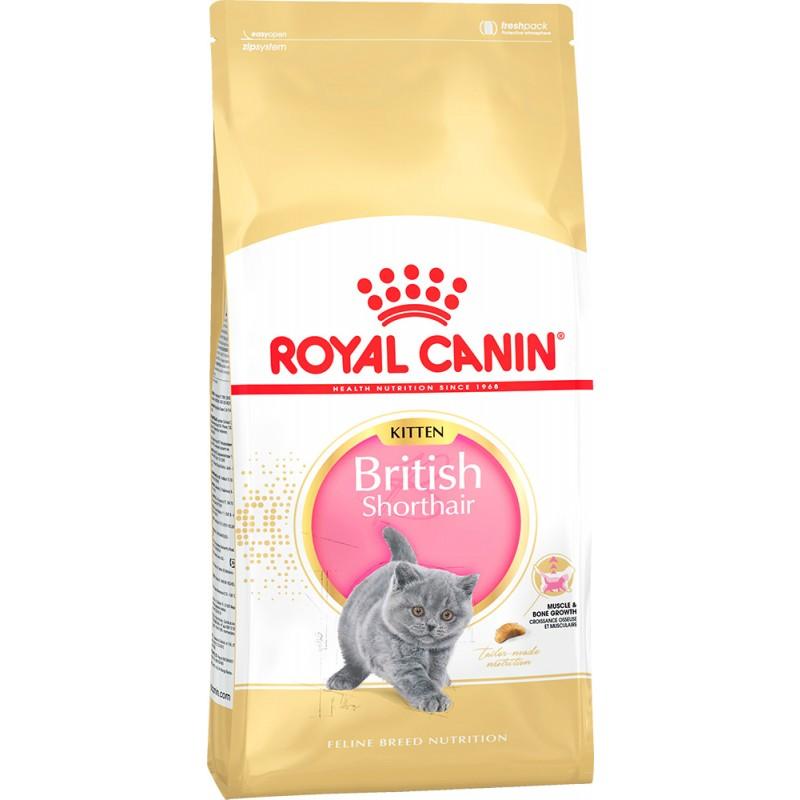 Сухой корм для котят Royal Canin Kitten British Shorthair 2 кг