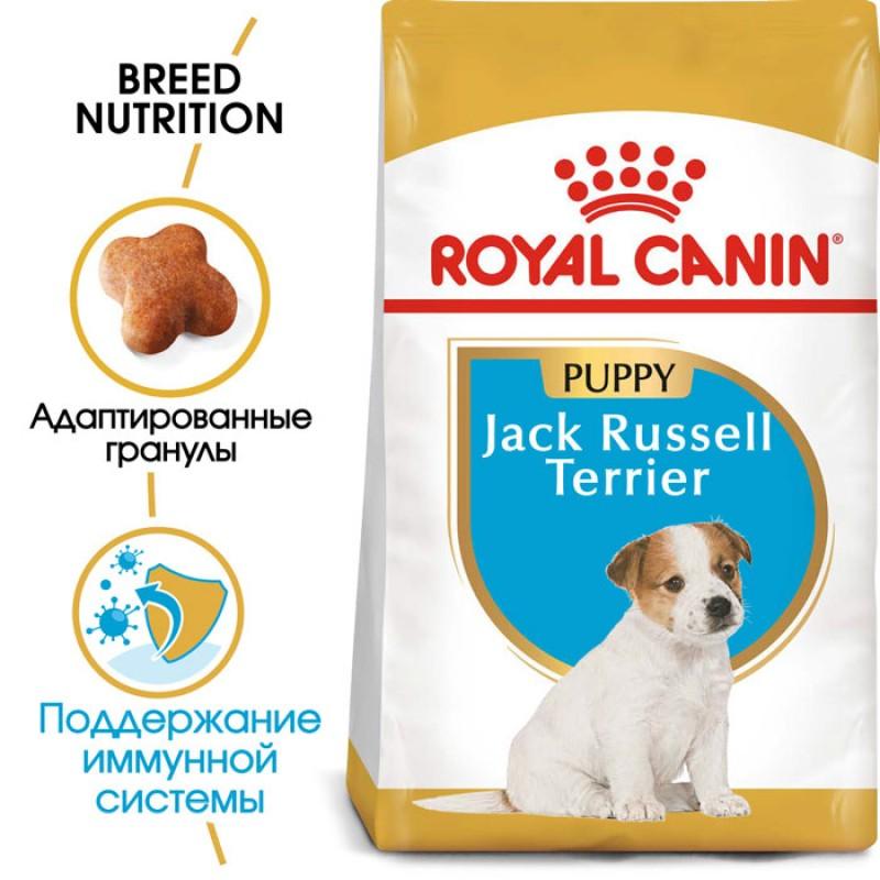 Сухой корм для щенков Royal Canin Jack Russel Terrier Puppy 0,5 кг