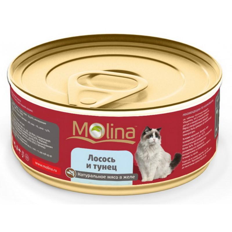 Влажный корм для кошек Molina Лосось с Тунцом в Желе 0,08 кг